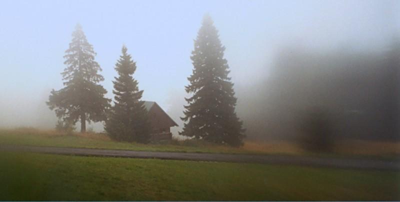 Lantos Sándor::Hajnali köd