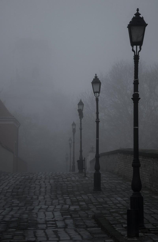 Sárközi Zsuzsa::Hajnal