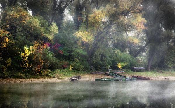 Dunapart ködben 2