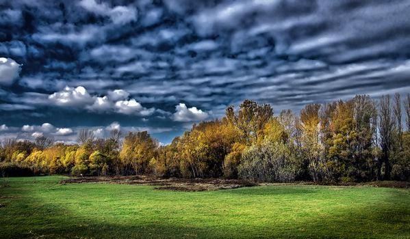 Vihar előtt