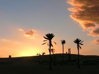 Szijártó Ernő::Sivatagi alkony